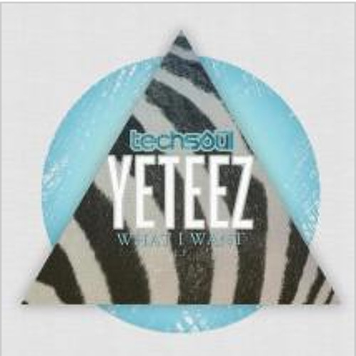 Yeteez - What I Want (DiMO (BG) Remix) [Techsoul Records]