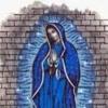 el anqel azul-los 2 primos -narcogobiernos 2012