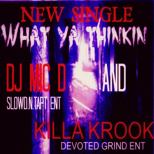 Dj Mic D, KillaKrooK - What ya thinkin