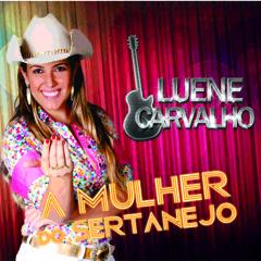 """Sofrendo de Salto Alto - Luene Carvalho """"A mulher do Sertanejo!"""""""