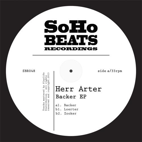 SBR048 : Herr Arter - Loerter (Original Mix)