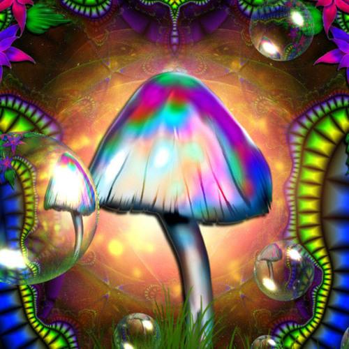 Mushrooms Dance