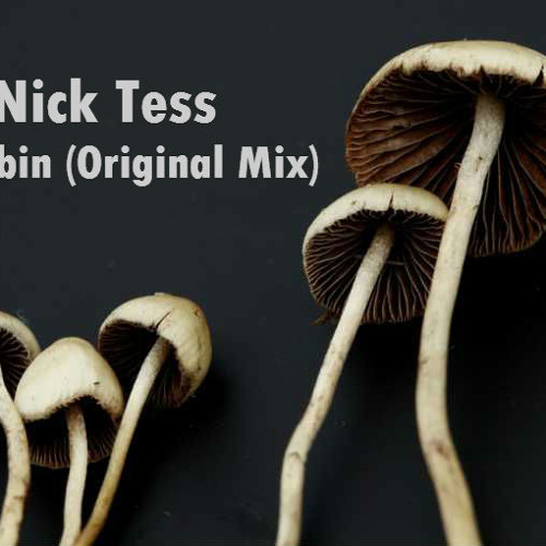 Nick Tess - Psilocybin (Original Mix)