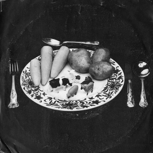 10. Vintage Recording. 'Meat' by Rotovators (1976) written and produced by Martin Mitchell