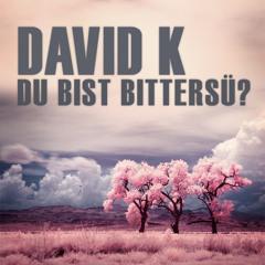David K. - Du bist Bittersü? PROMO MARCH 2013