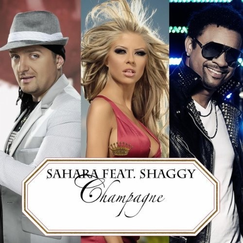 Shaggy - Everybody loves Champagne (Sean Finn & Jay Frog Radio Edit) (Snippet)