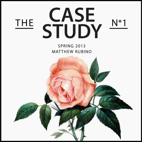 Spring 2013:  The Case Study No. 1