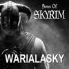 Sons Of Skyrim - Metal Remix