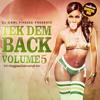 DJ Carl Finesse Presents Tek Dem Back Vol 5 (90's Reggae & Dancehall Mix)