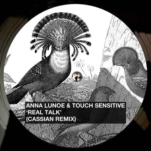 Anna Lunoe & Touch Sensitive - Real Talk (Cassian Remix)