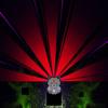 Pryapisme - Une nuit sur le Mont-Chauvelu