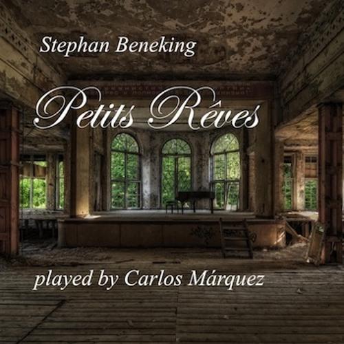 Petit Reve No. 17 in F sharp minor - played by Carlos Márquez - www.beneking.com