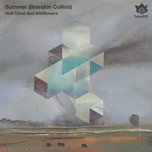 Summer (Brendon Collins) - The Vault (Tulipa Recordings)