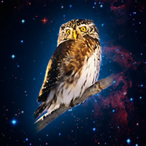 Starry Night (Joe Satriani Cover)