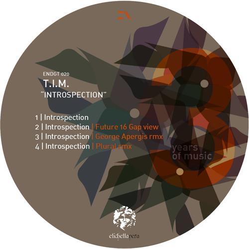 Endgt020 2 T.I.M. - Introspection Future 16 Gap View Etichetta Nera