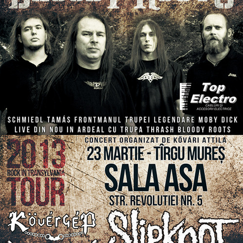 BLOODY ROOTS - Promo Concert Tg. Mures (23.03.2013)