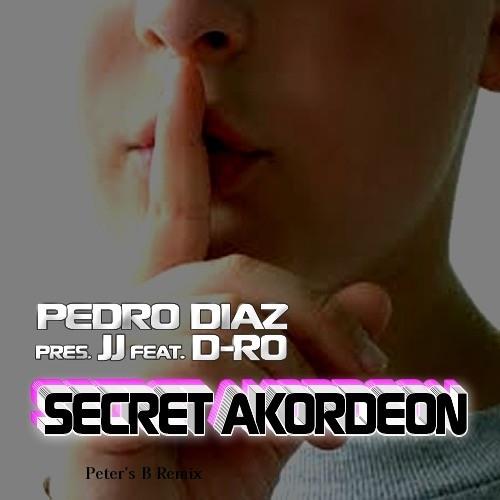 Pedro Diaz pres. J.J feat D-RO - SECRET AKORDEON (Peter's B Remix) PREVIEW!!