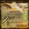 Universal Mind Meditation {Guided Meditation}