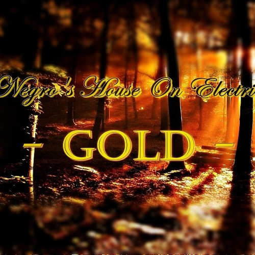 NekoNegros House on Electric Zone - GOLD