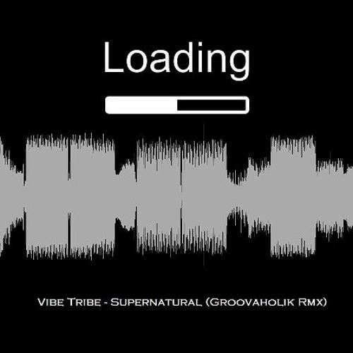Vibe Tribe - Supernatural (Groovaholik Remix)
