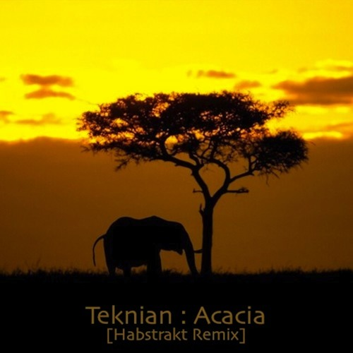 Acacia by Teknian (Habstrakt Remix)