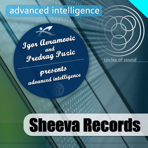 Igor Avramovic & Predrag Puzic - Advanced Intelligence (out on sheeva records)