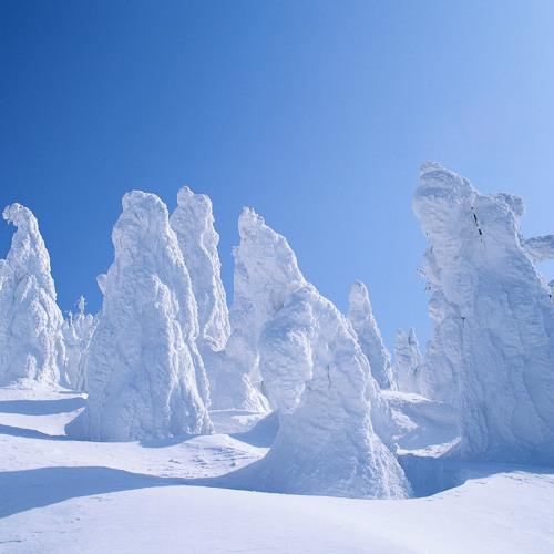 SynoP - Snow