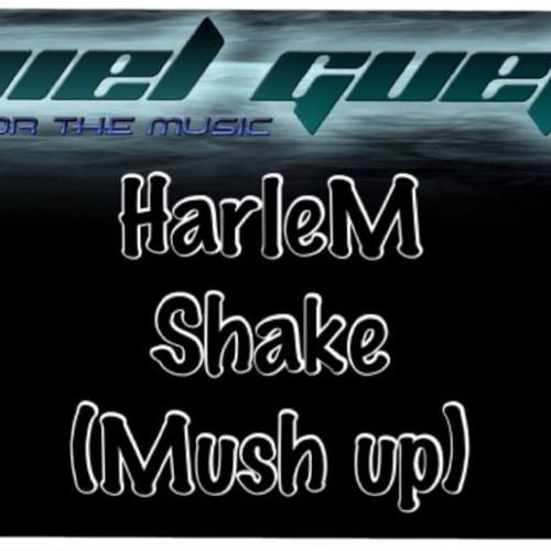 Baauer - Harlem Shake (by Dj Aviel Guetta Mash up)