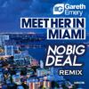 Gareth Emery - Meet Her In Miami (No Big Deal Remix)