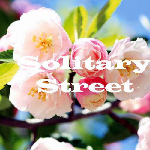 [bzB-2] Solitary Street - Spring Street