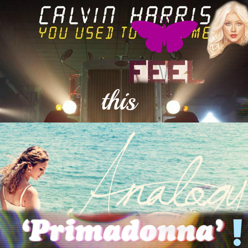 Calvin Harris vs others - You Used to Feel this Analogy, Primadonna!