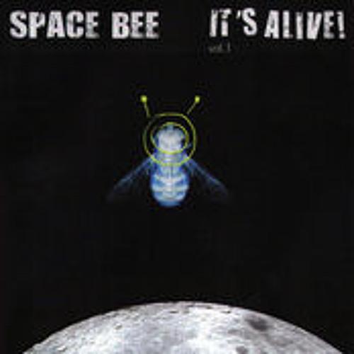 Space Bee - The Acrobat