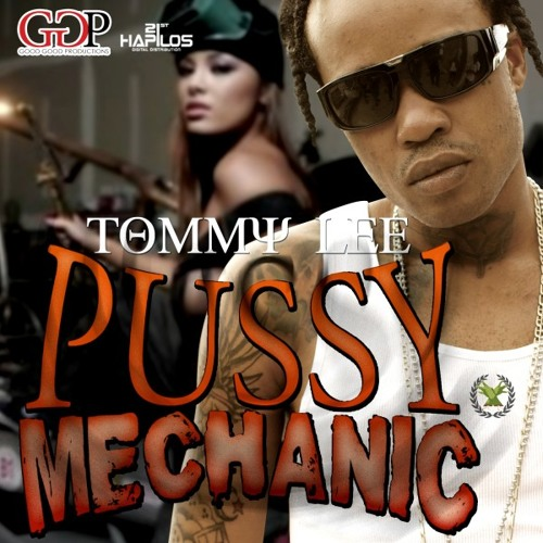Tommy Lee - Pussy Mechanic