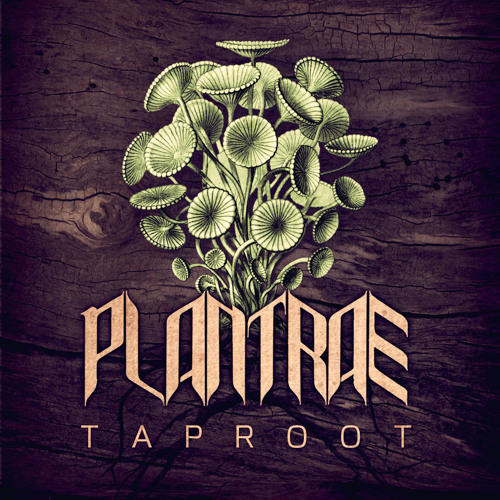 Plantrae - Enter The Seed