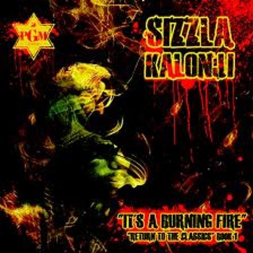 DJ Child x Sizzla Kalonji, It's A Burning Fire