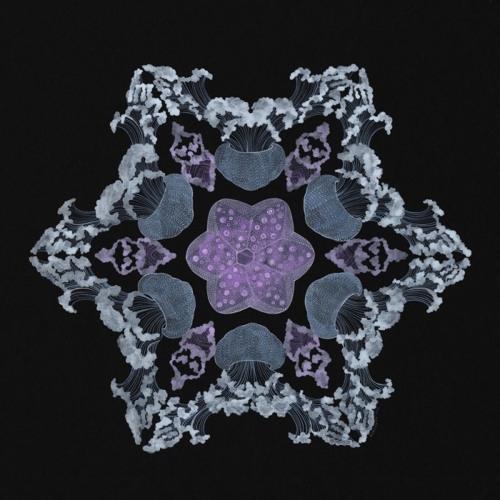 Björk - Desired Constellation (myhrmyhr mix)