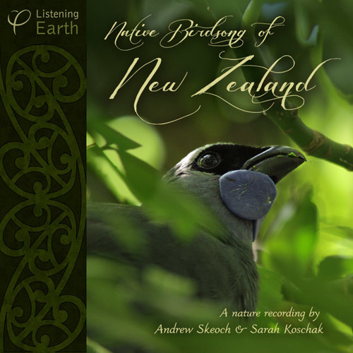'Native Birdsong of New Zealand' - Album sample