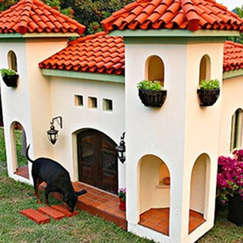 Linda Mcnally's Doghouse