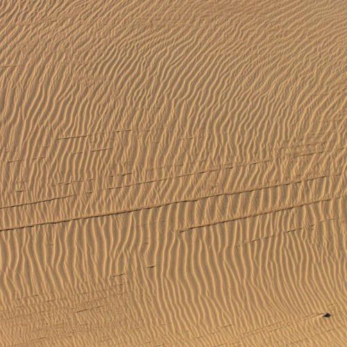 Mihkel Zilmer - Creatures in the Sand (Fantasy / Comedy feature film, Work in Progress)