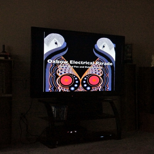 Electrical Parade (Fox/Lebach)