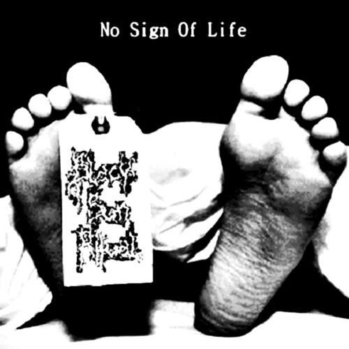 Black Sun Ritual - No Sign Of Life