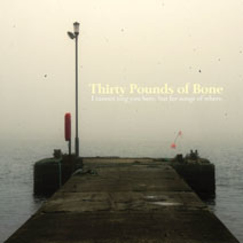 THIRTY POUNDS OF BONE - Home Faring