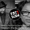 Anthony Hamilton & Elayna Boynton - Freedom (Fat Sushi Re-Cut / Remastered) // FREE DL