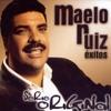 MIX MAELO RUIZ -NADIE IGUAL QUE TU - TE NECESITO MI AMOR - VICIO - SI SUPIERAS - DJ HERNAN MORENO