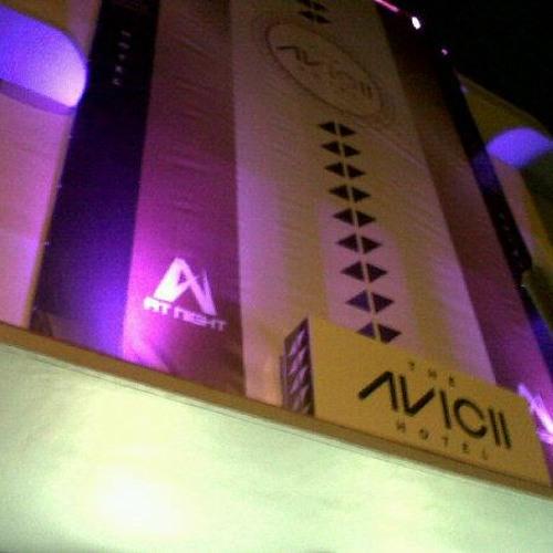 the south beach avicii hotel x