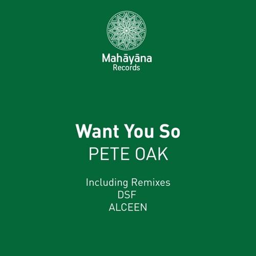 Pete Oak - Want You So (Alceen Remix)