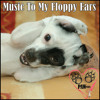 Music to My Floppy Ears Version 2