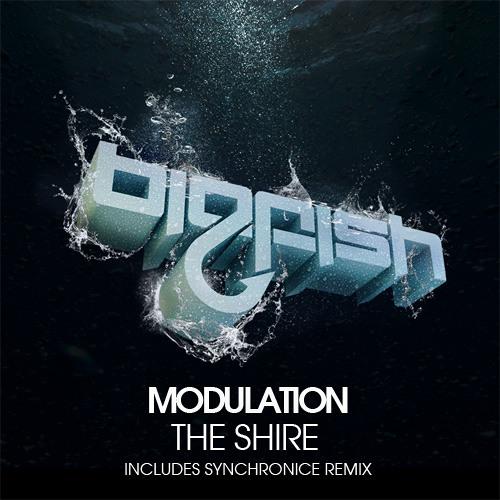 Modulation - The Shire (Original Mix)