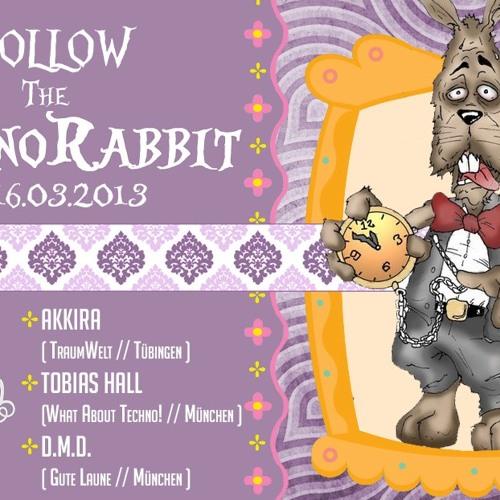 Follow the Technorabbit pres. AKKIRA (live) @ Grinsekatze 16.03.13