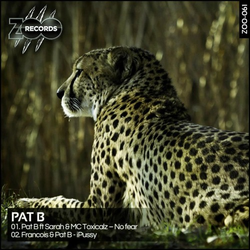 Pat B ft Sarah & MC Toxicalz - No fear [Preview]